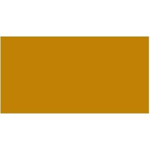 PREMIUM COLOR 60 ML. 015-OCRE AMARILLO